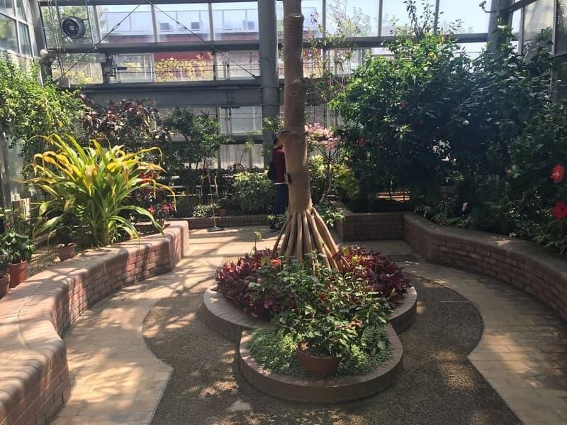 植物園ゾーン