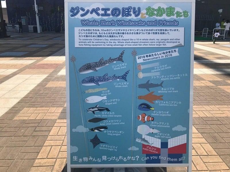 世界最大級の水族館